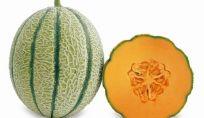Melone: frutto estivo con poche calorie