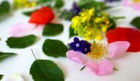 I fiori californiani: un aiuto naturale al femminile