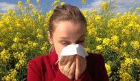 Rinite allergica sintomi e manifestazioni