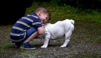 Cani e bambini: scelta e consigli per la convivenza