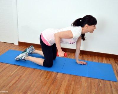 Esercizi per tricipiti un programma di allenamento completo