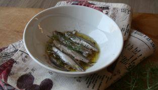 Alici marinate, portiamo il sapore del mare in tavola