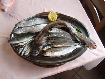 Pesce: alimento prezioso
