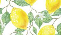Frutta su abiti e accessori: tendenza moda dell'estate 2015