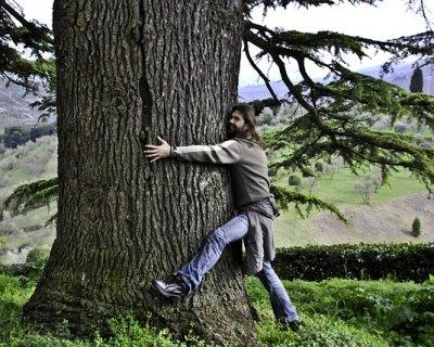 Abbracciare gli alberi per ritrovare se stessi
