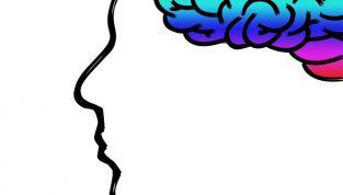 Sapiosexual: quando il cervello è più attraente del corpo