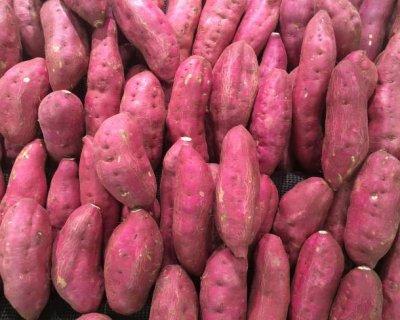 Patata dolce o batata, una radice zuccherosa ottima sostituta delle patate