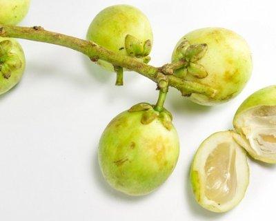 Lanzones: i frutti esotici dalle 1.000 virtù
