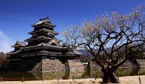 L'inizio dell'era Reiwa in Giappone:ordine, amore e pace