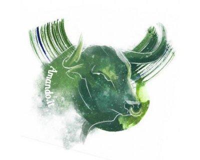 Oroscopo 2020 Toro