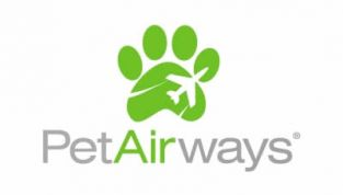 Pet Airways: la compagnia dedicata agli animali