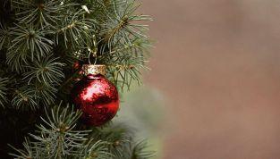 Albero di Natale nella tradizione