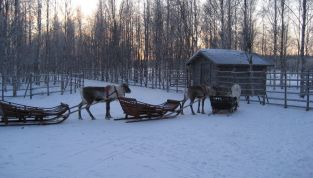 Viaggio in Lapponia, il paese di Babbo Natale