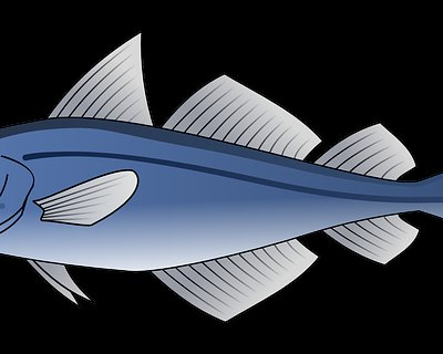 Pesce nell'alimentazione dei bambini