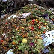 Biogas da rifiuti urbani