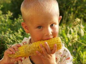 Bimbo che mangia il mais