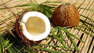 Shampoo  Ultra Dolce di Garnier al cacao e olio di cocco