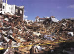 Terremoto Haiti 2010