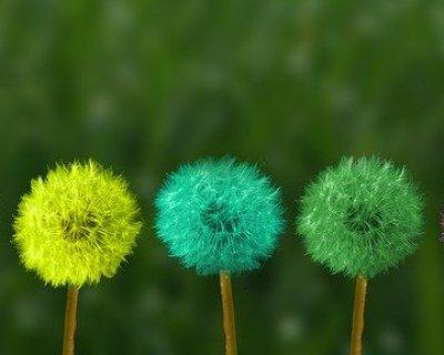 Mindfulness: nuova psicoterapia di gruppo