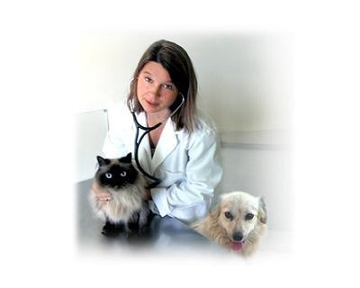 Psicologo per animali