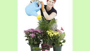 Badante delle piante