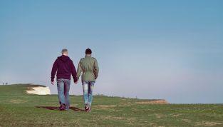 Imparare dalle coppie gay