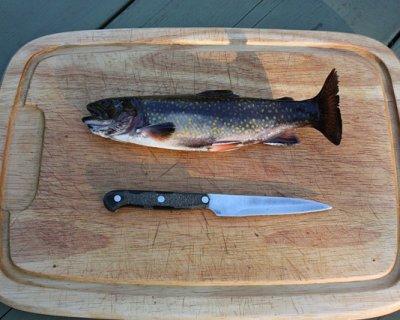 Cucinare e servire il pesce