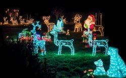 Come decorare il giardino per Natale: soluzioni e idee