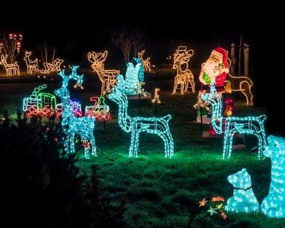 Come decorare il giardino per natale soluzioni e idee - Idee per decorazioni natalizie per la casa ...
