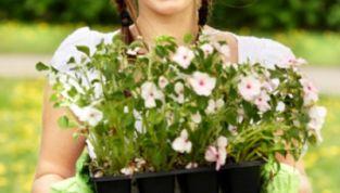 Lavori di giardinaggio per la primavera