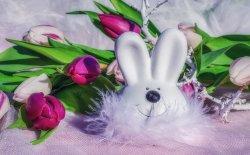 Centrotavola pasquali: idee per decorare la tavola e non solo
