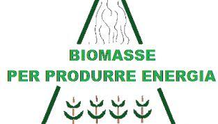 Ricavare energia verde dalle biomasse