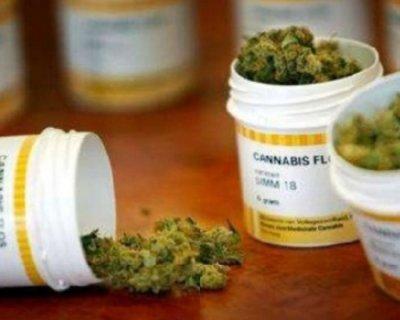 Cannabis legale in Veneto, dopo Liguria e Toscana
