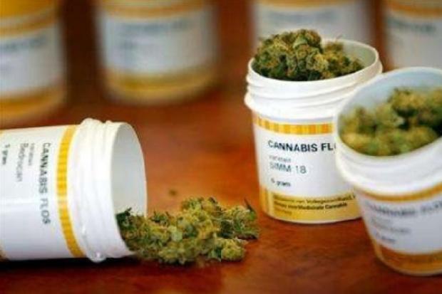Cannabis legale Veneto Liguria Toscana