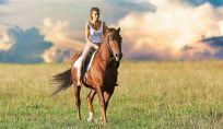 Equitazione e benessere: l'uomo e il cavallo, una grande amicizia.