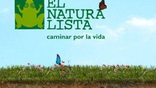 El Naturalista scarpe Autunno/Inverno 2012-2013