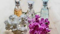 Vota il miglior profumo 2013