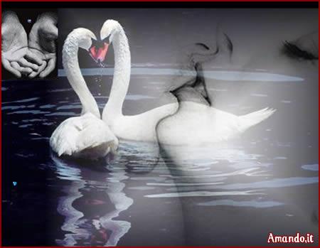 Pps D Amore Inverno Di Un Amore