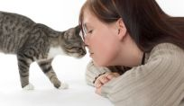 Psicologia del gatto