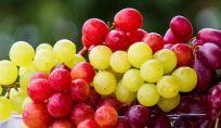 Dieta dell'uva: depurarsi in autunno con un frutto di stagione