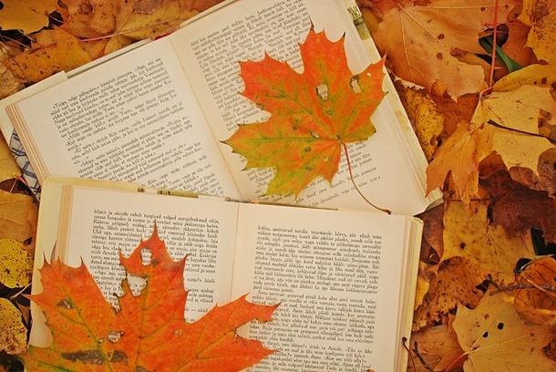 I libri dell'autunno 2013