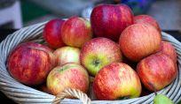 Dieta autunnale: ecco gli alimenti da non farsi mancare in tavola