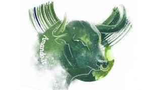 Astrologia Karmica: il segno del toro