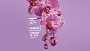 Pantone ha decretato Radiant Orchid come il colore del 2014