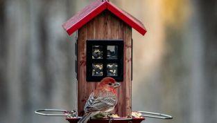 Mangiatoia per uccellini con materiale di riciclo