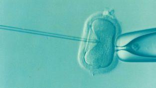 Gravidanza biochimica: che cos'è?