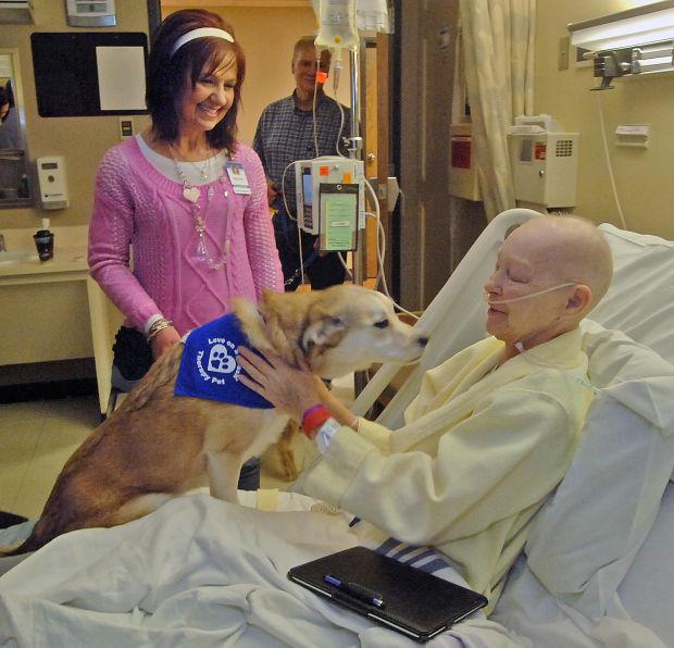 Una Zampata Alle Terapie Pet Therapy In Reparto