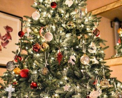 Luci natalizie idee per decorare la casa illuminandola - Addobbi natalizi da giardino ...
