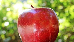 Aurora red: il rosso intenso è di moda