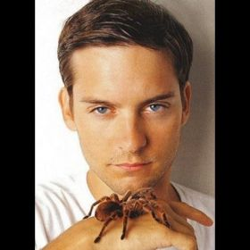 Tobey Maguire - Foto 19